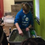 hydroponics at Bugg Elementary
